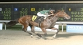Sebs Princess Wins The Louisiana Jewel Stakes