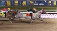 GLOBITO TAKES THE EVANGELINE DOWNS DASH