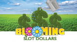 Pick a Petal and Win a Share of $30,000 Slot Dollars!